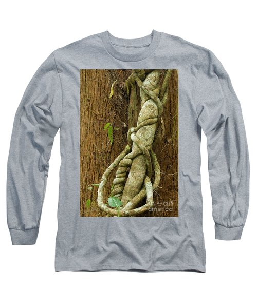 Long Sleeve T-Shirt featuring the photograph Vine by Werner Padarin