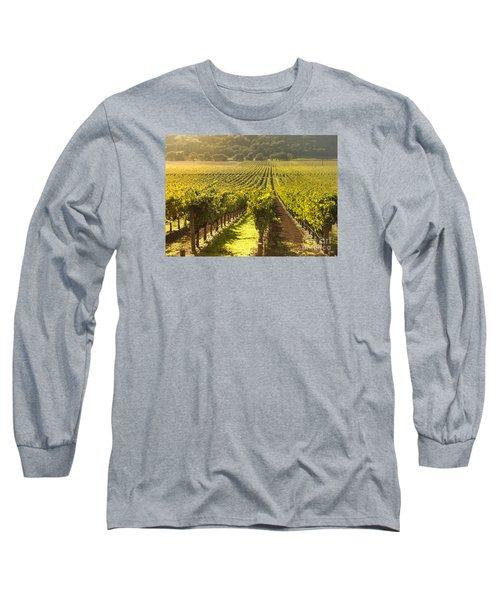 Vineyard In Napa Valley Long Sleeve T-Shirt by Diane Diederich