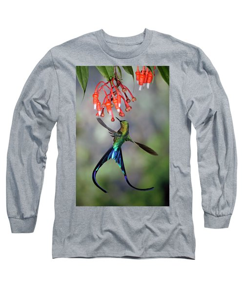 Violet-tailed Sylph Feeding Long Sleeve T-Shirt