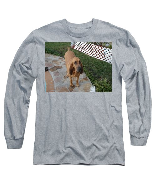 Waiting For Dinner Long Sleeve T-Shirt by Val Oconnor