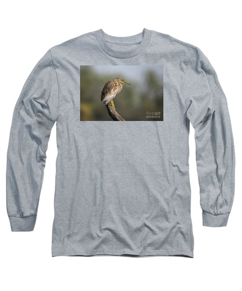 Waiting Patiently Long Sleeve T-Shirt by Pravine Chester