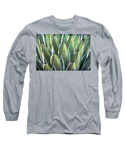 Long Sleeve T-Shirt featuring the photograph Wall Of Agave  by Saija Lehtonen
