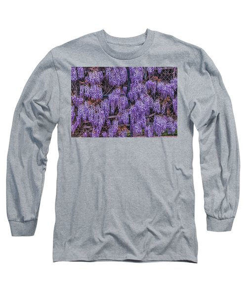 Wall Of Wisteria Long Sleeve T-Shirt
