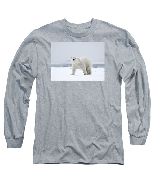Watchful In The Arctic Long Sleeve T-Shirt