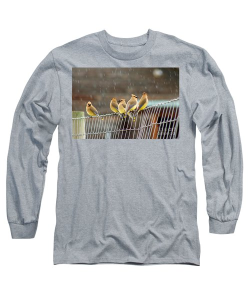 Waxwings In The Rain Long Sleeve T-Shirt by Sean Griffin