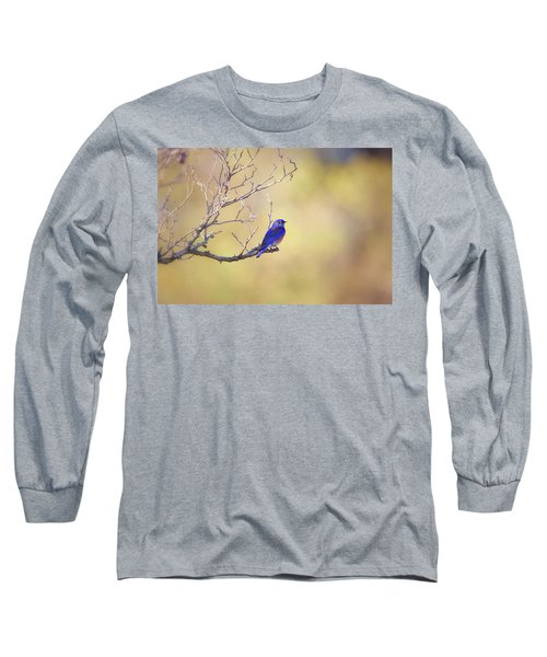 Western Bluebird On Bare Branch Long Sleeve T-Shirt