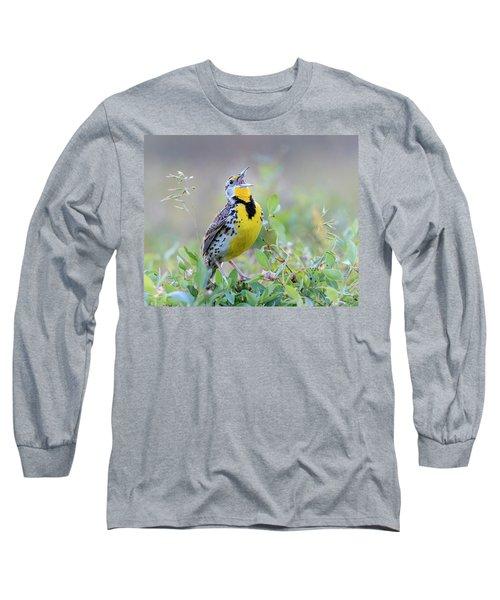 Western Meadowlark Long Sleeve T-Shirt by Jack Bell