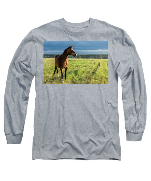 Western Stallion Long Sleeve T-Shirt
