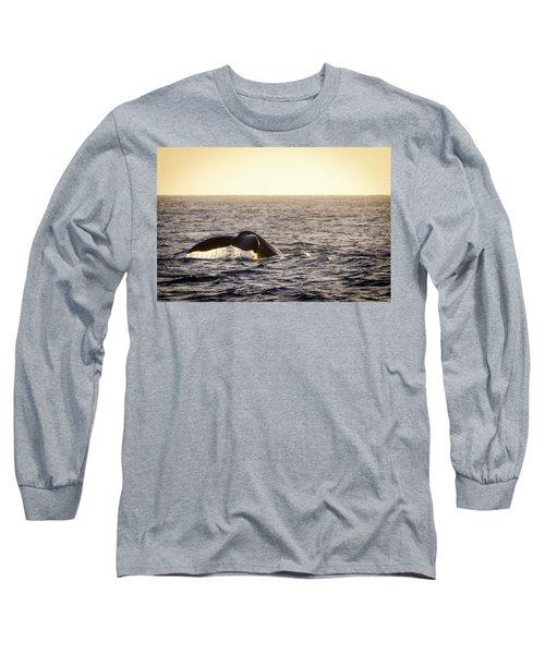 Whale Fluke Long Sleeve T-Shirt