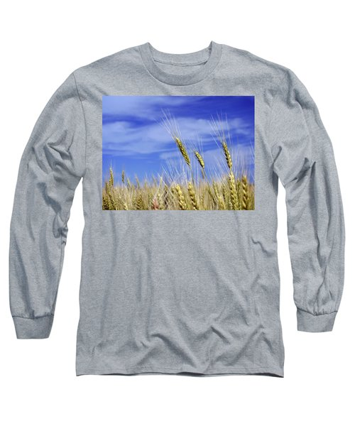 Wheat Trio Long Sleeve T-Shirt by Keith Armstrong