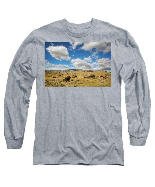 Where The Buffalo Roam Long Sleeve T-Shirt