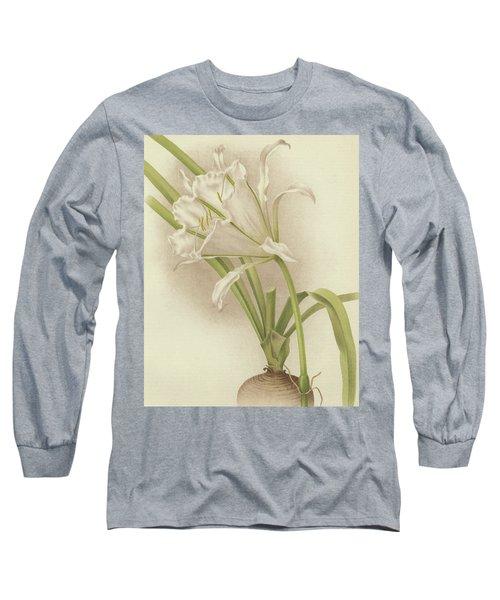 White Amaryllis   Ismene Andreana Long Sleeve T-Shirt