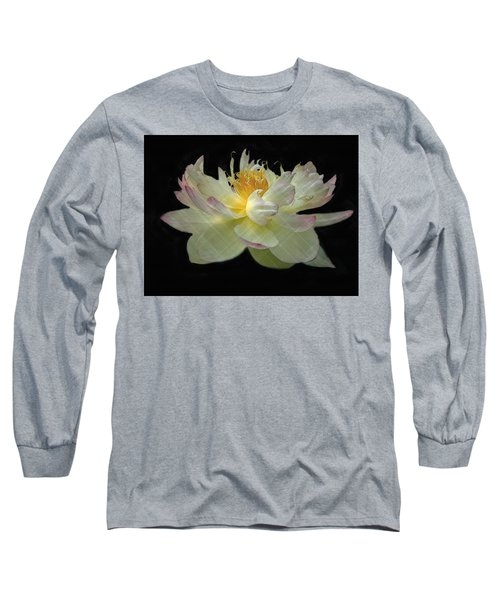White And Pink Floral Long Sleeve T-Shirt