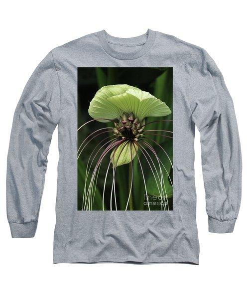 White Batflower Long Sleeve T-Shirt