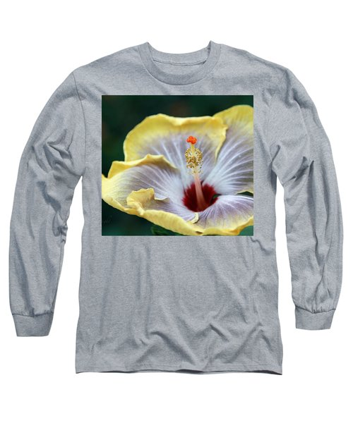 White Hibiscus Long Sleeve T-Shirt by Yvonne Wright