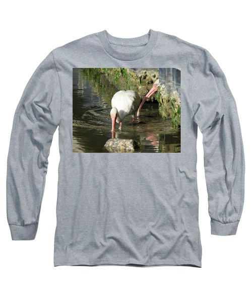 Long Sleeve T-Shirt featuring the photograph White Ibis Couple by George Randy Bass