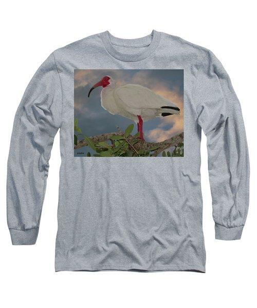 White Ibis Long Sleeve T-Shirt