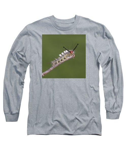 White-marked Tussock Moth Long Sleeve T-Shirt by David Lester
