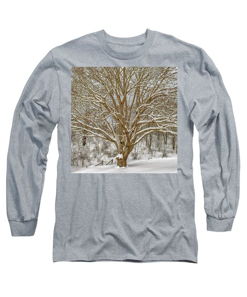 White Oak In Snow Long Sleeve T-Shirt