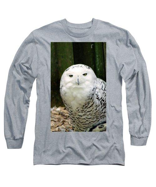 White Owl Long Sleeve T-Shirt by Rainer Kersten