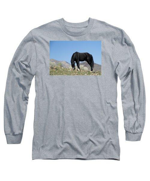 Wild Black Stallion Horse Long Sleeve T-Shirt