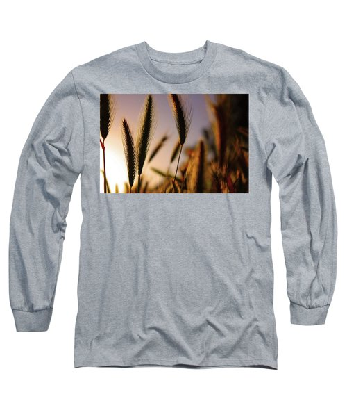 Wild Grasses At Sunset Long Sleeve T-Shirt