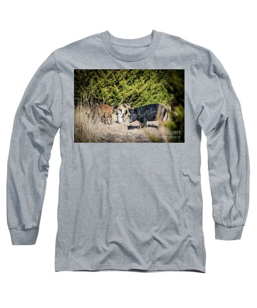 Wild Hogs Long Sleeve T-Shirt