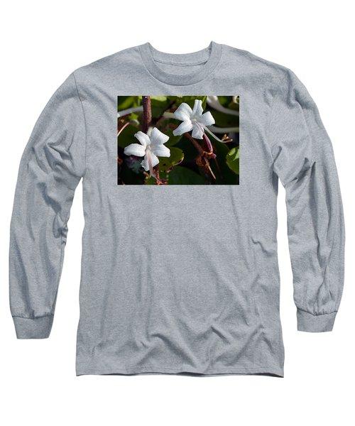 Wild Honeysuckle Long Sleeve T-Shirt by Kenneth Albin