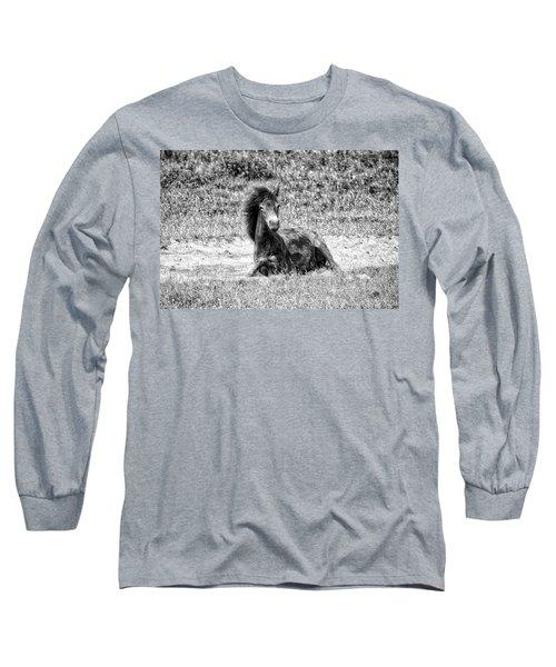 Wild Horses Bw3 Long Sleeve T-Shirt