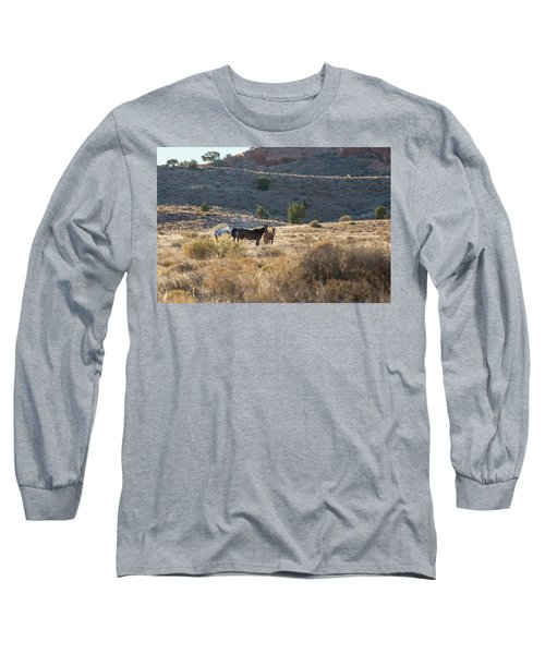 Long Sleeve T-Shirt featuring the photograph Wild Horses In Monument Valley by Jon Glaser