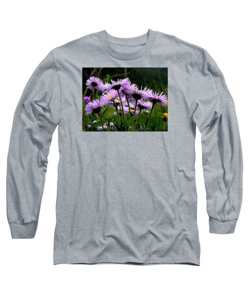 Wild Mountain Asters Long Sleeve T-Shirt