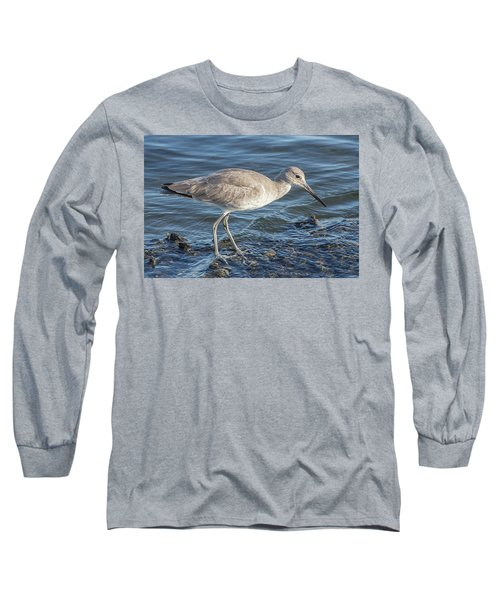 Willet In Winter Plumage Long Sleeve T-Shirt
