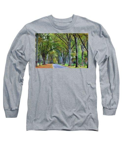 Willow Oak Trees Long Sleeve T-Shirt