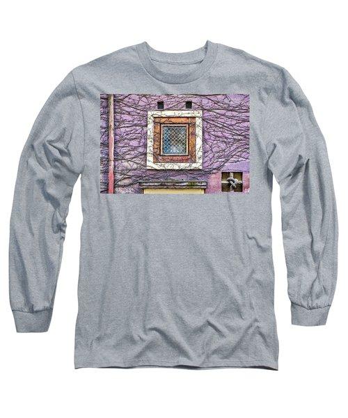 Window And Vines - Prague Long Sleeve T-Shirt