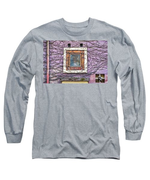 Window And Vines - Prague Long Sleeve T-Shirt