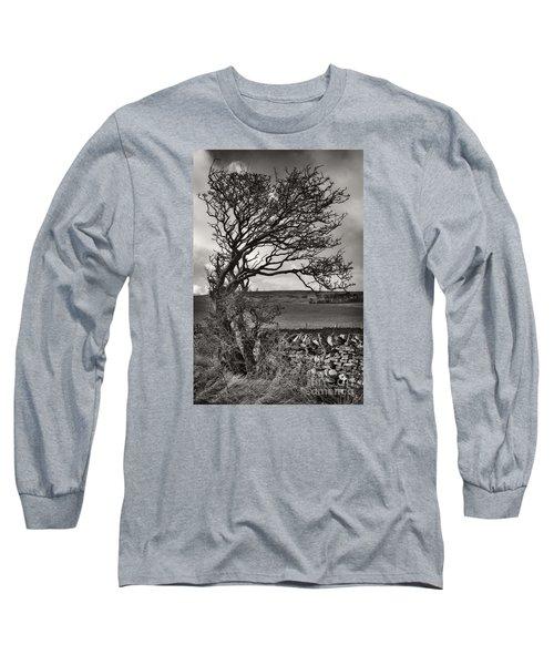 Windswept Tree In Winter Long Sleeve T-Shirt