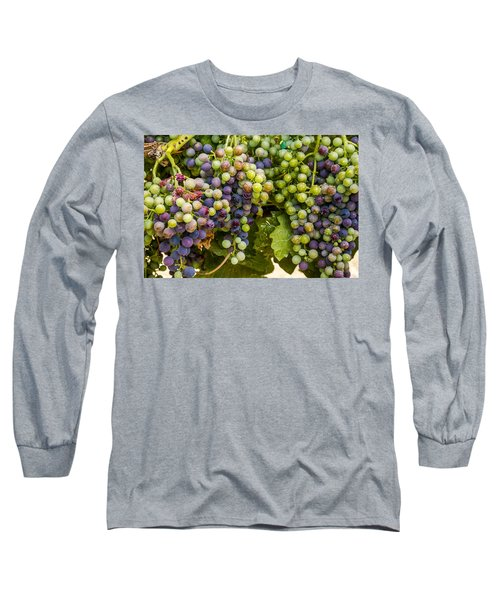 Wine Grapes On The Vine Long Sleeve T-Shirt