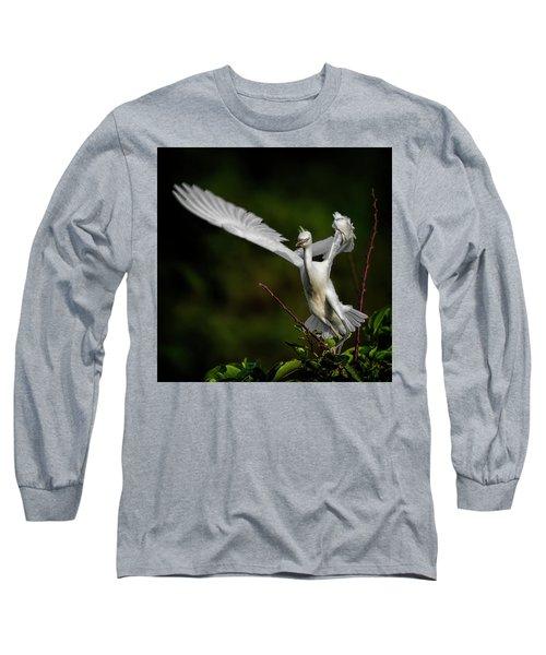 Winged Long Sleeve T-Shirt