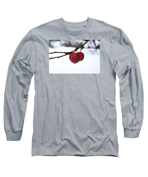 Winter Apples Long Sleeve T-Shirt by Ellery Russell
