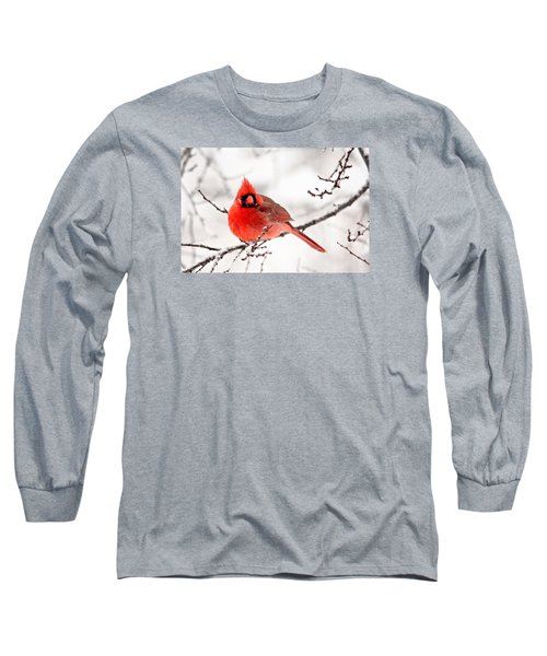 Long Sleeve T-Shirt featuring the photograph Winter Cardinal by Trina Ansel