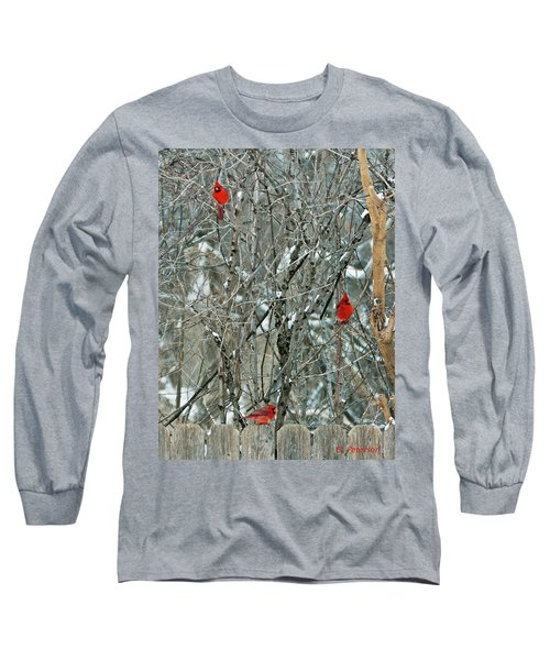 Winter Cardinals Long Sleeve T-Shirt