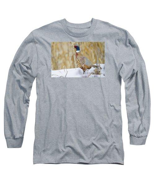Winter Color Long Sleeve T-Shirt