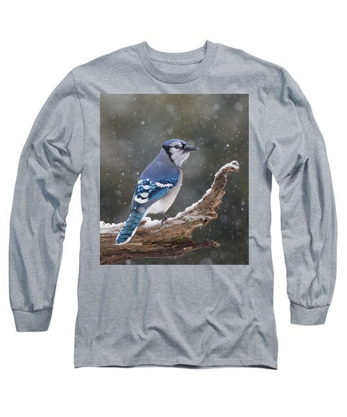 Long Sleeve T-Shirt featuring the photograph Winter Jay by Mircea Costina Photography