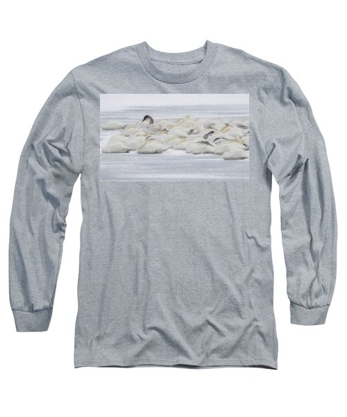 Long Sleeve T-Shirt featuring the photograph Winter by Kelly Marquardt