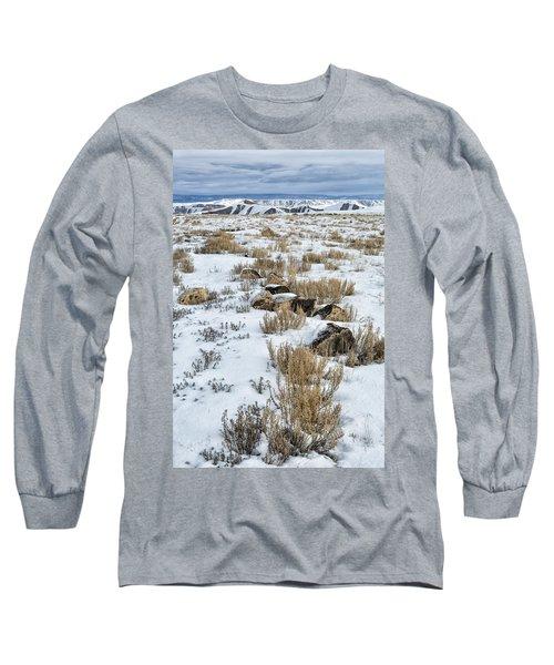 Winter Light In The High Desert Long Sleeve T-Shirt