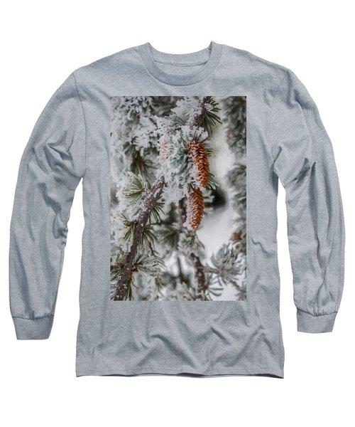 Winter Pine Cones Long Sleeve T-Shirt