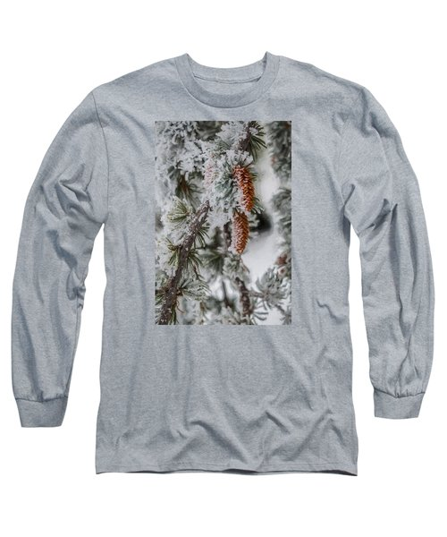 Winter Pine Cones Long Sleeve T-Shirt