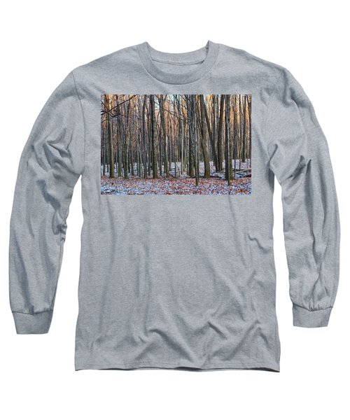 Winter - Uw Arboretum Madison Wisconsin Long Sleeve T-Shirt