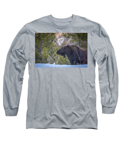 Winter's Arrival  Long Sleeve T-Shirt