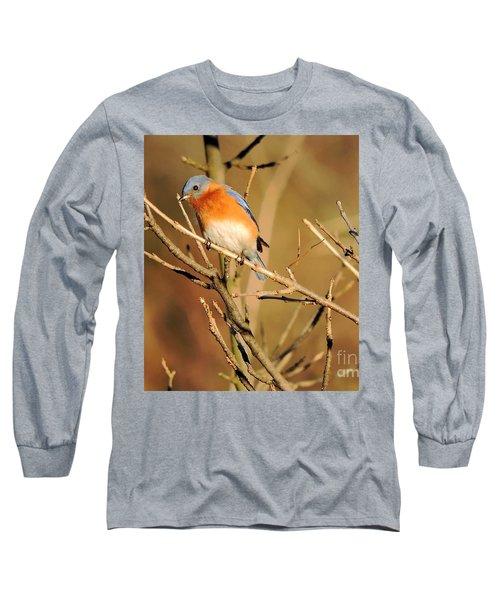 Winter's Bluebird  Long Sleeve T-Shirt